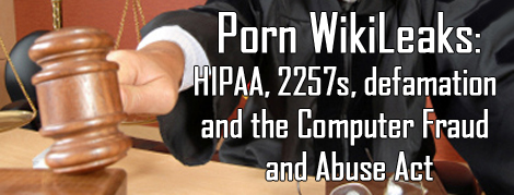 Legal aspects of the Porn Wikileaks case.