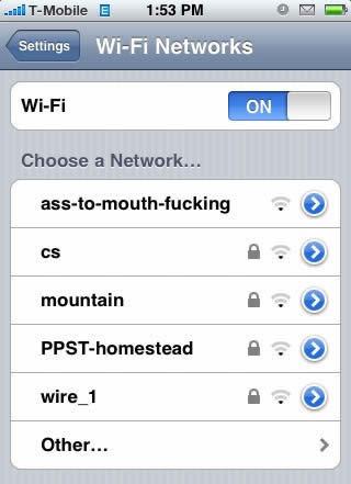 Slutty wi-fi names.